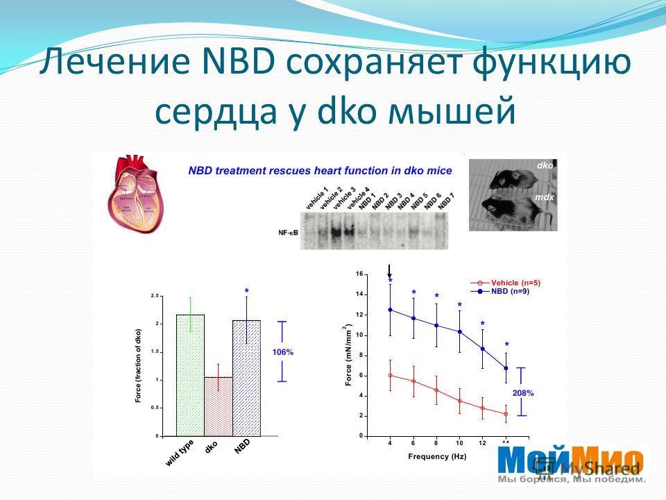 Лечение NBD сохраняет функцию сердца у dko мышей