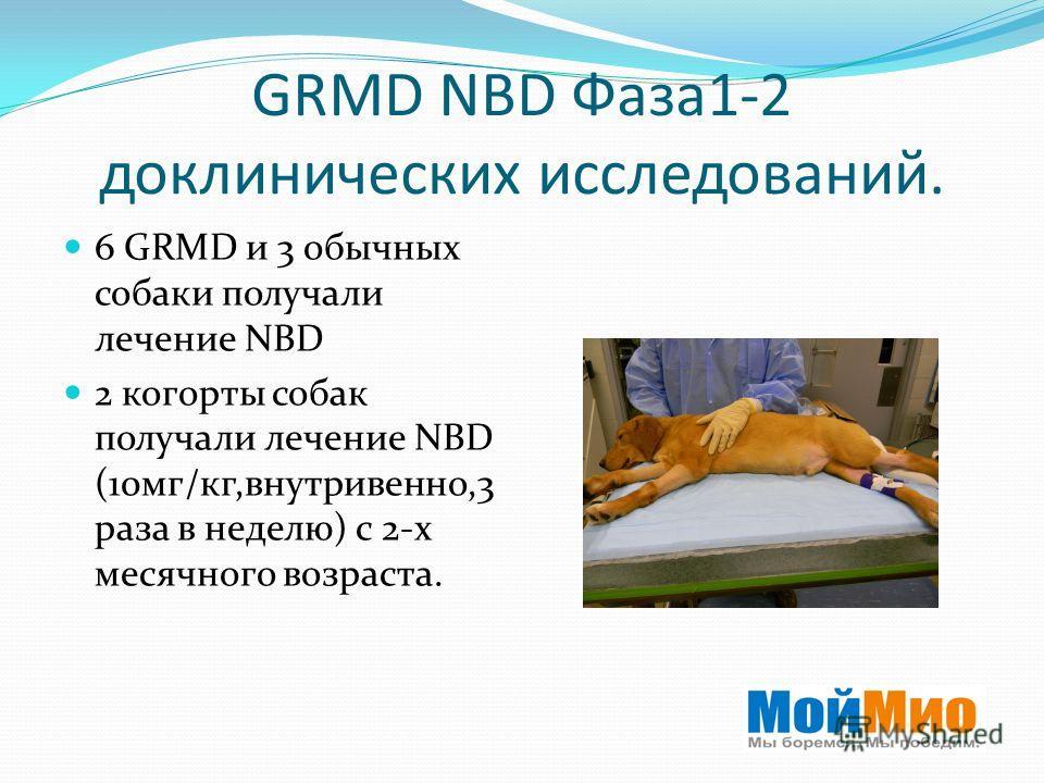 GRMD NBD Фаза 1-2 доклинических исследований. 6 GRMD и 3 обычных собаки получали лечение NBD 2 когорты собак получали лечение NBD (10 мг/кг,внутривенно,3 раза в неделю) с 2-х месячного возраста.