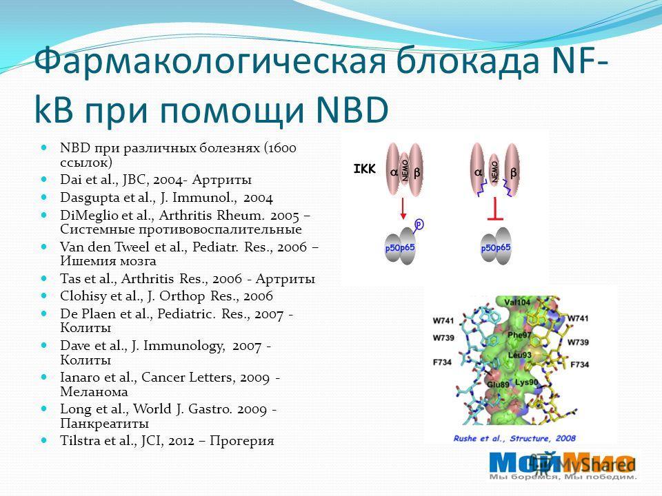 Фармакологическая блокада NF- kB при помощи NBD NBD при различных болезнях (1600 ссылок) Dai et al., JBC, 2004- Артриты Dasgupta et al., J. Immunol., 2004 DiMeglio et al., Arthritis Rheum. 2005 – Системные противовоспалительные Van den Tweel et al.,
