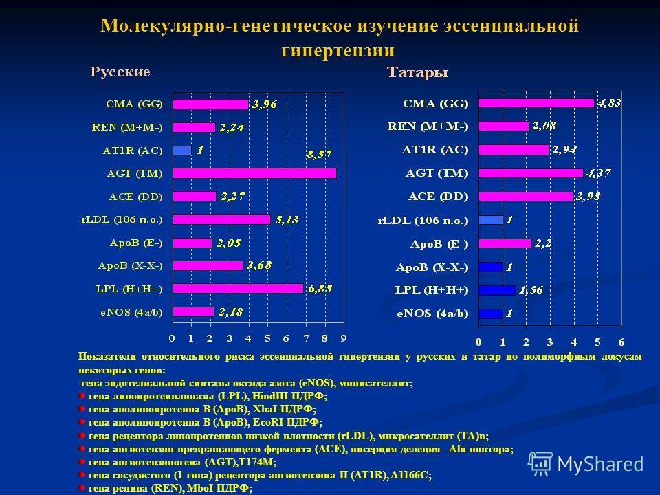 Молекулярно-генетическое изучение эссенциальной гипертензии Показатели относительного риска эссенциальной гипертензии у русских и татар по полиморфным локусам некоторых генов: гена эндотелиальной синтазы оксида азота (еNOS), минисателлит; гена липопр