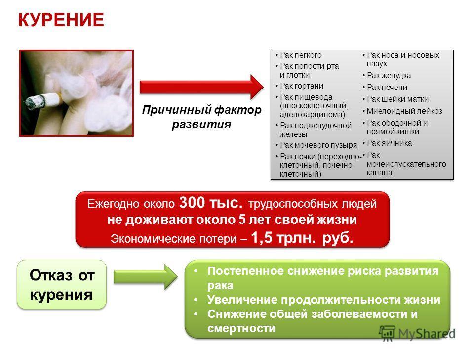 КУРЕНИЕ Рак легкого Рак полости рта и глотки Рак гортани Рак пищевода (плоскоклеточный, аденокарцинома) Рак поджелудочной железы Рак мочевого пузыря Рак почки (переходно- клеточный, почечно- клеточный) Рак носа и носовых пазух Рак желудка Рак печени