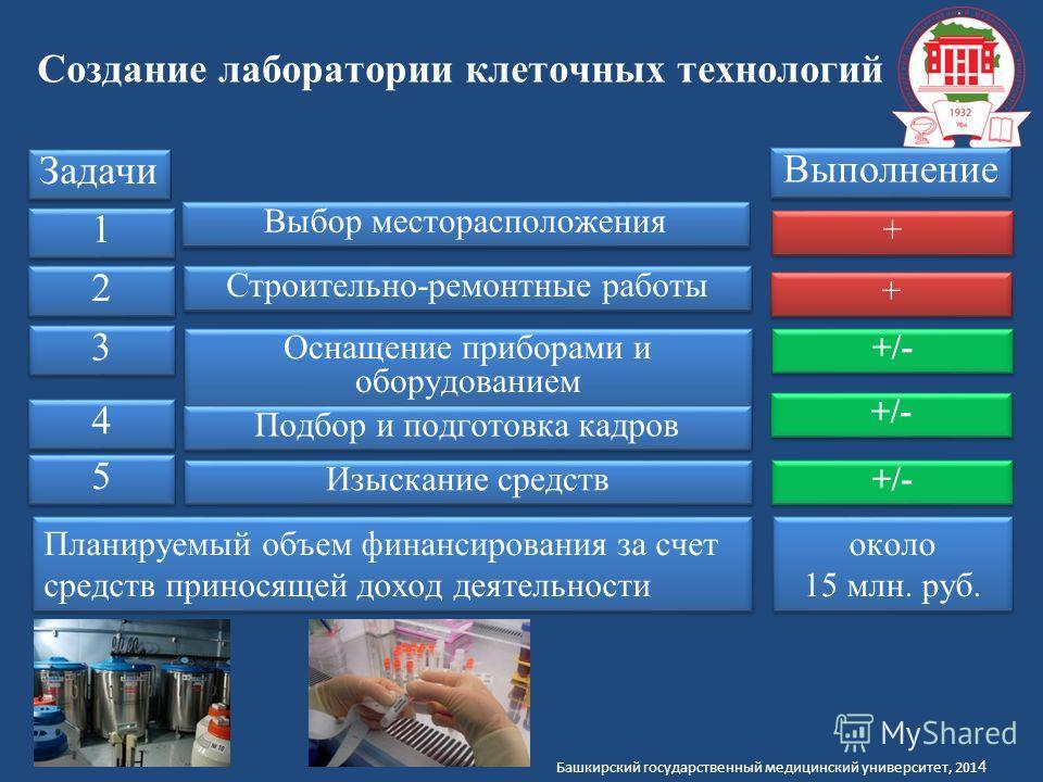 Башкирский государственный медицинский университет, 201 4 Создание лаборатории клеточных технологий Задачи Выбор месторасположения Выполнение Строительно-ремонтные работы + + + + 1 1 2 2 3 3 Оснащение приборами и оборудованием +/- 4 4 Подбор и подгот