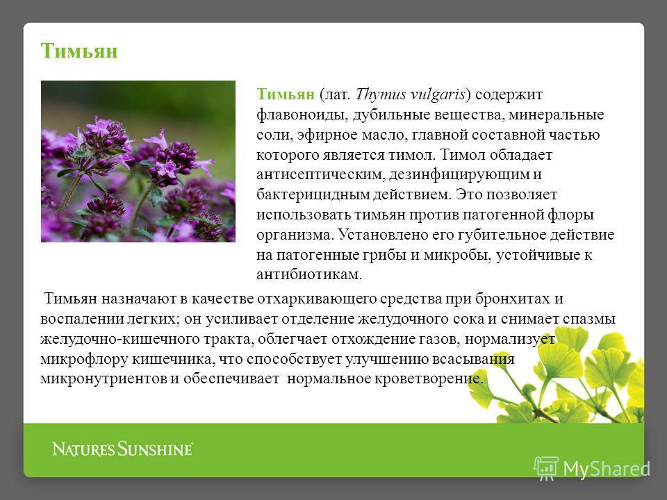 Тимьян Тимьян (лат. Thymus vulgaris) содержит флавоноиды, дубильные вещества, минеральные соли, эфирное масло, главной составной частью которого является тимол. Тимол обладает антисептическим, дезинфицирующим и бактерицидным действием. Это позволяет