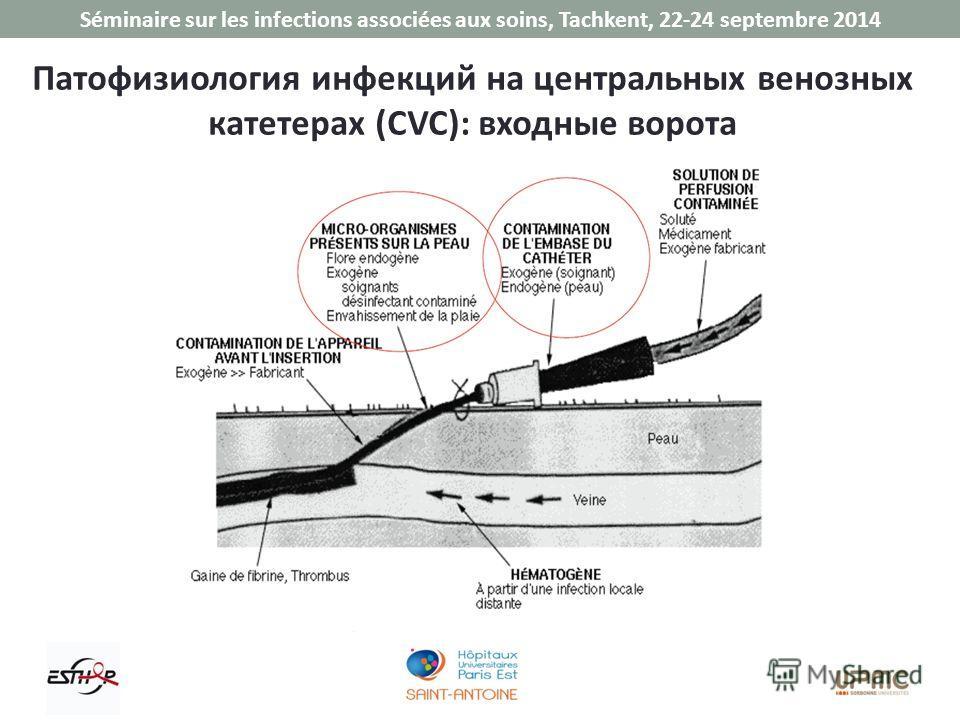 Séminaire sur les infections associées aux soins, Tachkent, 22-24 septembre 2014 Патофизиология инфекций на центральных венозных катетерах (CVC): входные ворота