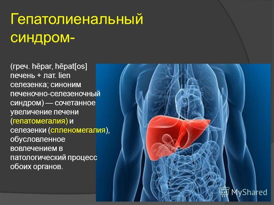 Гепатолиенальный синдром- (греч. hēpar, hēpat[os] печень + лат. lien селезенка; синоним печеночно-селезеночный синдром) сочетанное увеличение печени (гепатомегалия) и селезенки (спленомегалия), обусловленное вовлечением в патологический процесс обоих