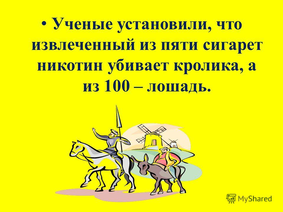 Ученые установили, что извлеченный из пяти сигарет никотин убивает кролика, а из 100 – лошадь.