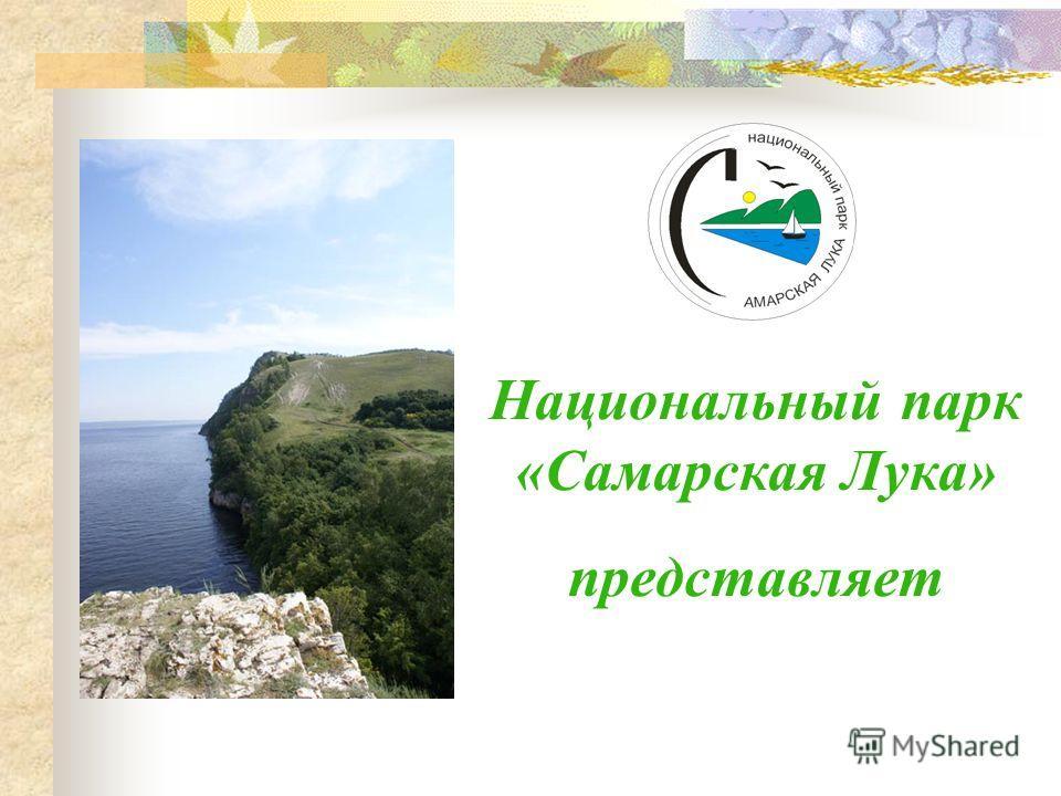 Национальный парк «Самарская Лука» представляет