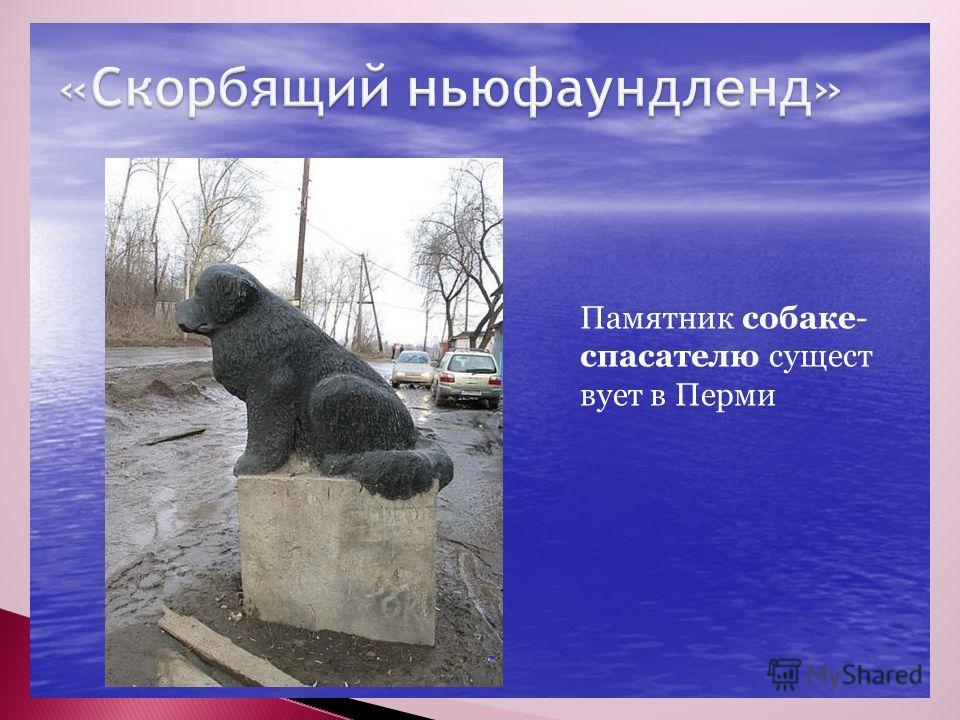 «» Памятник собаке- спасателю сущест вует в Перми