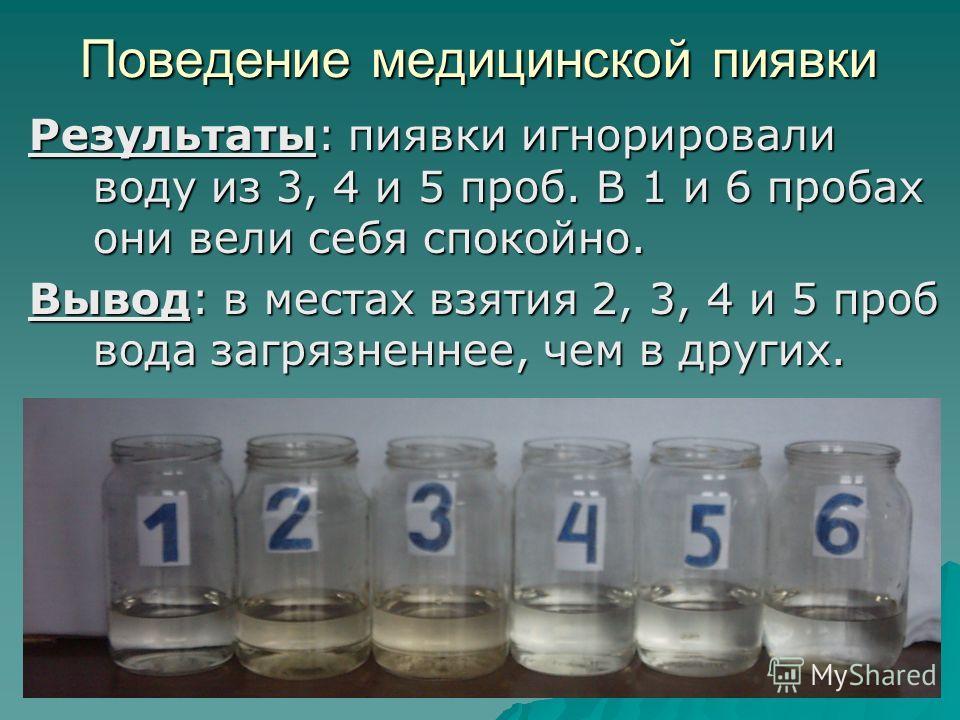 Поведение медицинской пиявки Результаты: пиявки игнорировали воду из 3, 4 и 5 проб. В 1 и 6 пробах они вели себя спокойно. Вывод: в местах взятия 2, 3, 4 и 5 проб вода загрязненнее, чем в других.