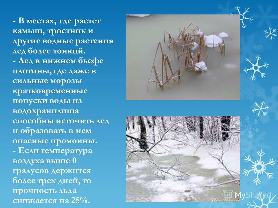 - В местах, где растет камыш, тростник и другие водные растения лед более тонкий. - Лед в нижнем бьефе плотины, где даже в сильные морозы кратковременные попуски воды из водохранилища способны источить лед и образовать в нем опасные промоины. - Если
