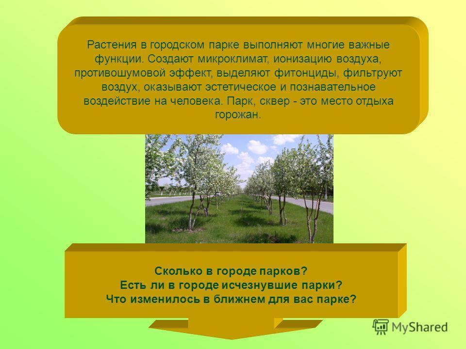Сколько в городе парков? Есть ли в городе исчезнувшие парки? Что изменилось в ближнем для вас парке? Растения в городском парке выполняют многие важные функции. Создают микроклимат, ионизацию воздуха, противошумовой эффект, выделяют фитонциды, фильтр