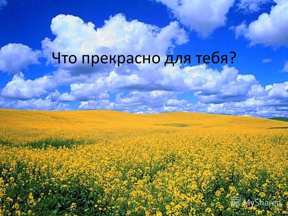 Что прекрасно для тебя?