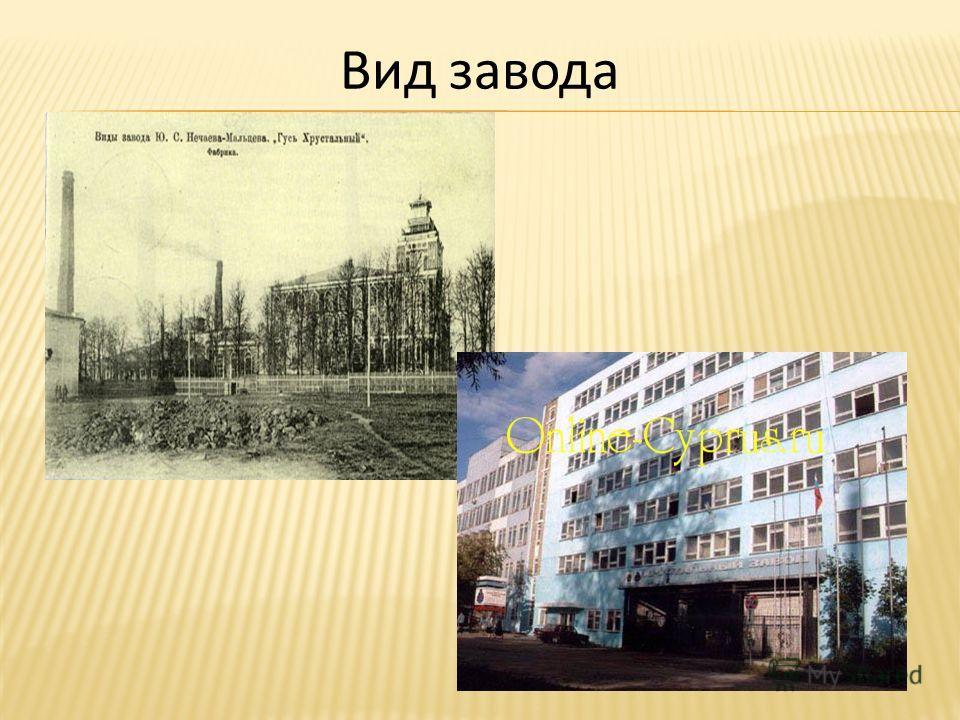 Вид завода