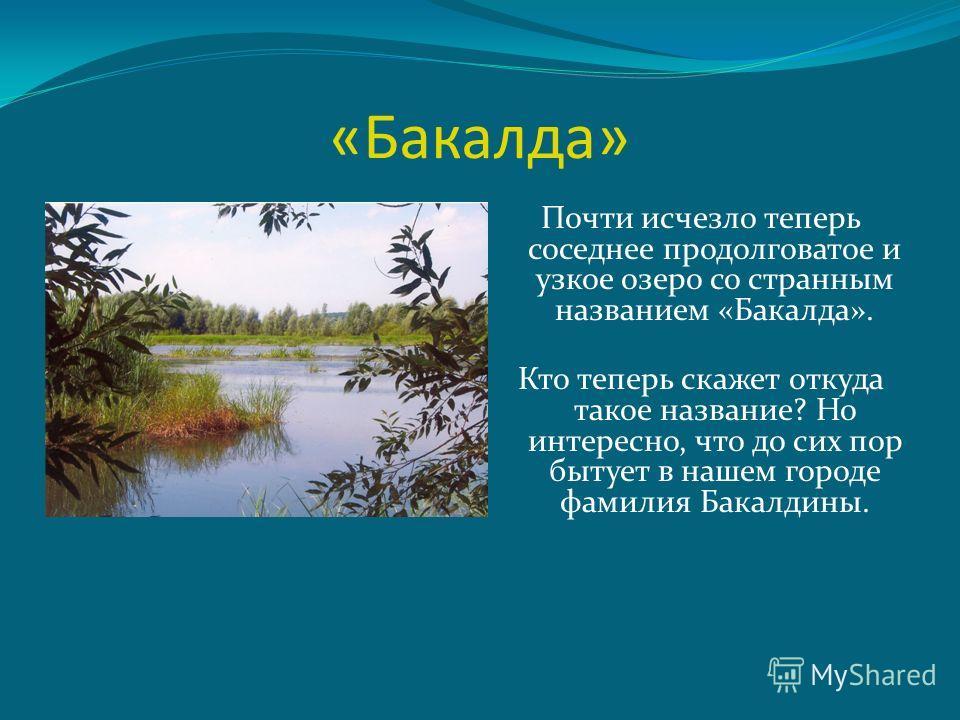«Бакалда» Почти исчезло теперь соседнее продолговатое и узкое озеро со странным названием «Бакалда». Кто теперь скажет откуда такое название? Но интересно, что до сих пор бытует в нашем городе фамилия Бакалдины.