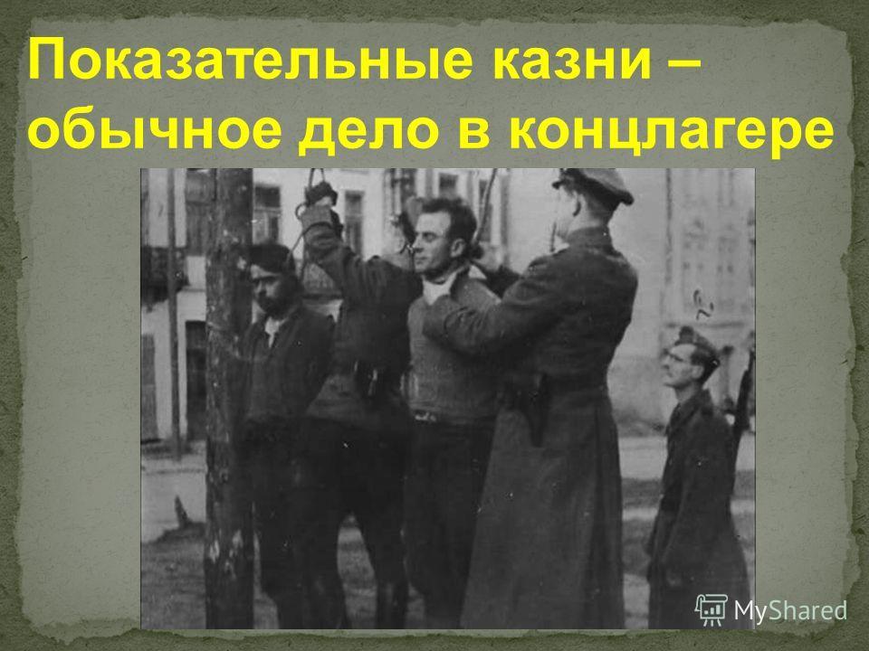 Показательные казни – обычное дело в концлагере