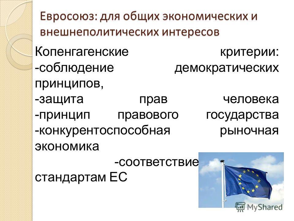 Евросоюз: для общих экономических и внешнеполитических интересов Копенгагенские критерии: -соблюдение демократических принципов, -защита прав человека -принцип правового государства -конкурентоспособная рыночная экономика -соответствие стандартам ЕС