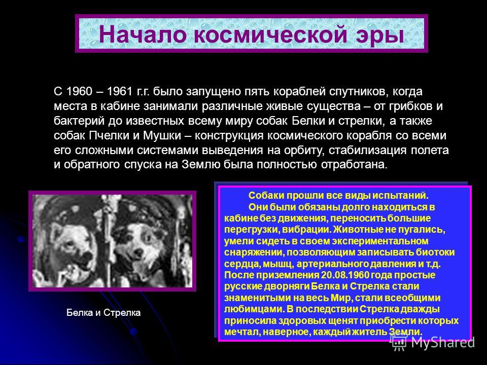 6 Начало космической эры С 1960 – 1961 г.г. было запущено пять кораблей спутников, когда места в кабине занимали различные живые существа – от грибков и бактерий до известных всему миру собак Белки и стрелки, а также собак Пчелки и Мушки – конструкци