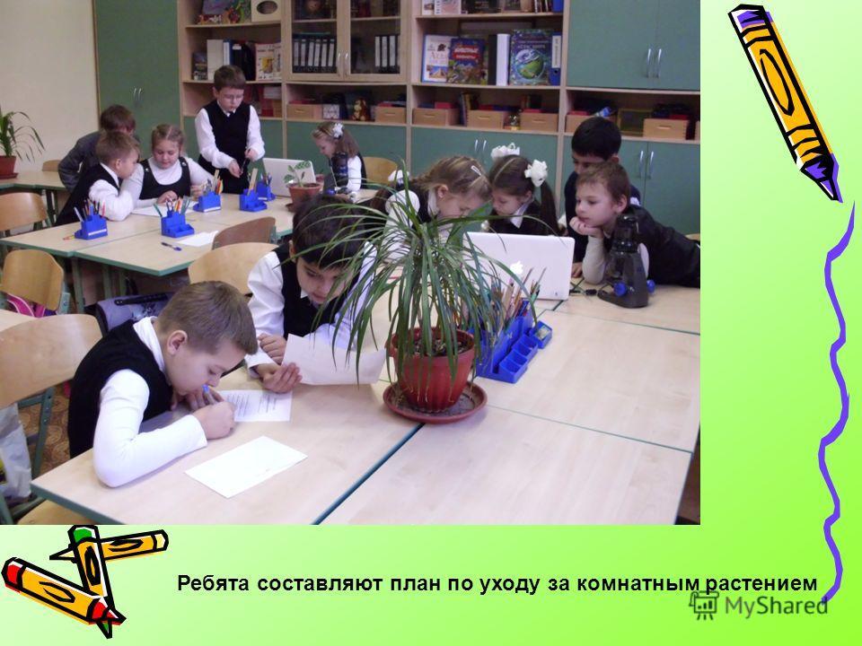 Ребята составляют план по уходу за комнатным растением