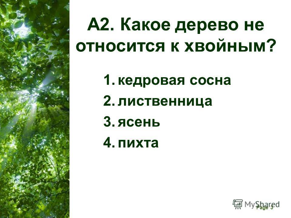 Free Powerpoint Templates Page 3 А2. Какое дерево не относится к хвойным? 1. кедровая сосна 2. лиственница 3. ясень 4.пихта