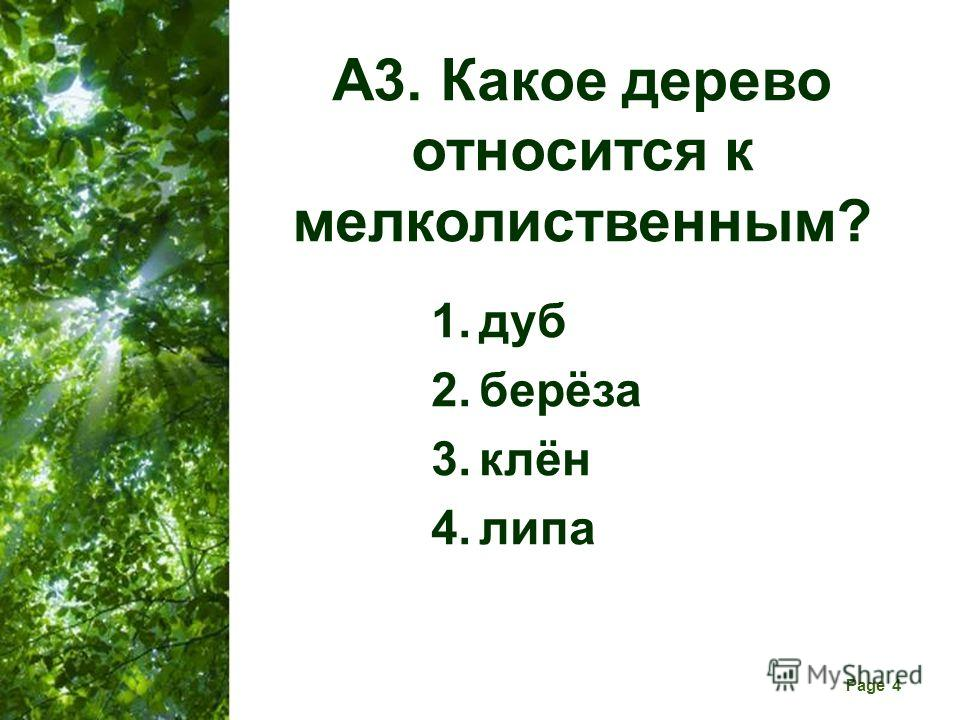 Free Powerpoint Templates Page 4 А3. Какое дерево относится к мелколиственным? 1. дуб 2.берёза 3.клён 4.липа