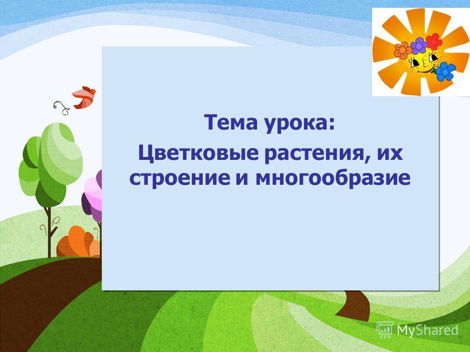 Тема урока: Цветковые растения, их строение и многообразие Тема урока: Цветковые растения, их строение и многообразие