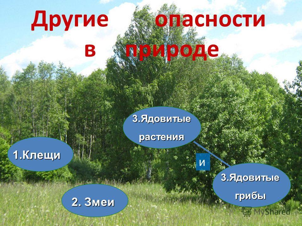 Другие опасности в природе 1. Клещи 2. Змеи 3. Ядовитыегрибы 3. Ядовитыерастения и