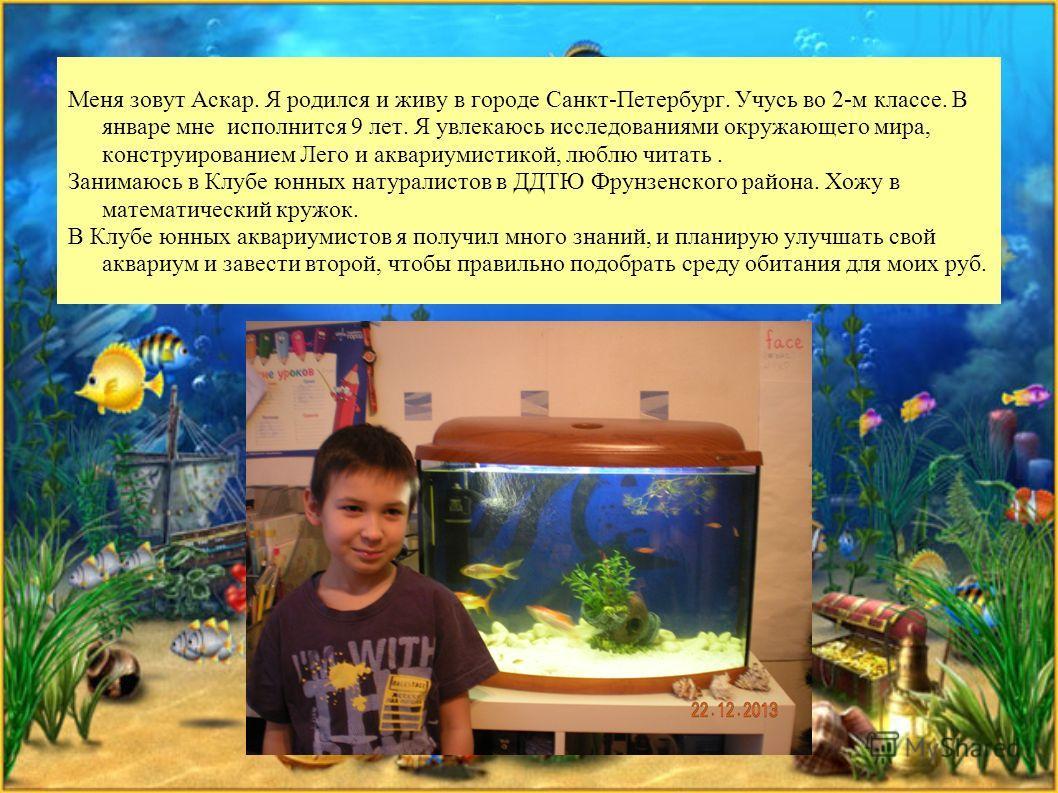Меня зовут Аскар. Я родился и живу в городе Санкт-Петербург. Учусь во 2-м классе. В январе мне исполнится 9 лет. Я увлекаюсь исследованиями окружающего мира, конструированием Лего и аквариумистикой, люблю читать. Занимаюсь в Клубе юных натуралистов в
