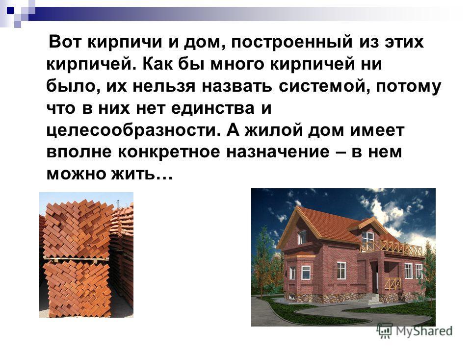 Вот кирпичи и дом, построенный из этих кирпичей. Как бы много кирпичей ни было, их нельзя назвать системой, потому что в них нет единства и целесообразности. А жилой дом имеет вполне конкретное назначение – в нем можно жить…