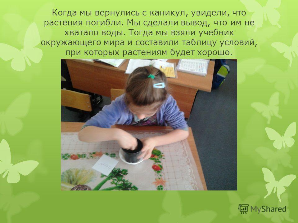 Когда мы вернулись с каникул, увидели, что растения погибли. Мы сделали вывод, что им не хватало воды. Тогда мы взяли учебник окружающего мира и составили таблицу условий, при которых растениям будет хорошо.