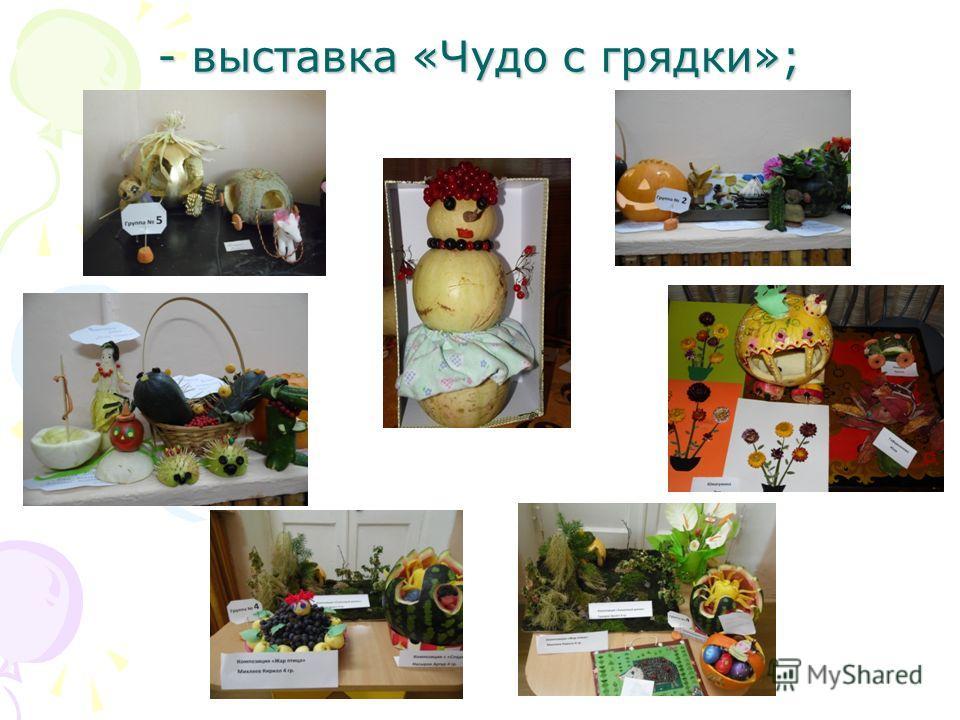 - выставка «Чудо с грядки»;