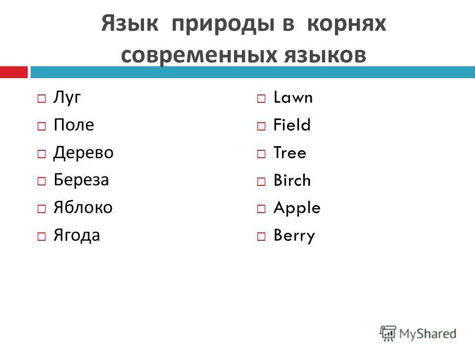 Язык природы в корнях современных языков Луг Поле Дерево Береза Яблоко Ягода Lawn Field Tree Birch Apple Berry