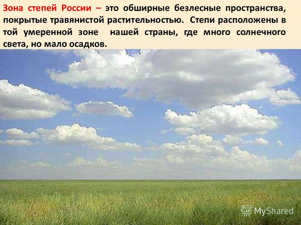 Зона степей России – это обширные безлесные пространства, покрытые травянистой растительностью. Степи расположены в той умеренной зоне нашей страны, где много солнечного света, но мало осадков.