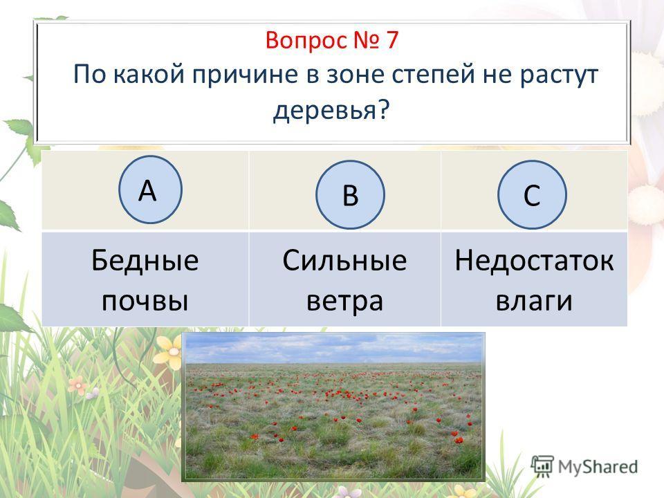 Вопрос 7 По какой причине в зоне степей не растут деревья? Бедные почвы Сильные ветра Недостаток влаги А BC
