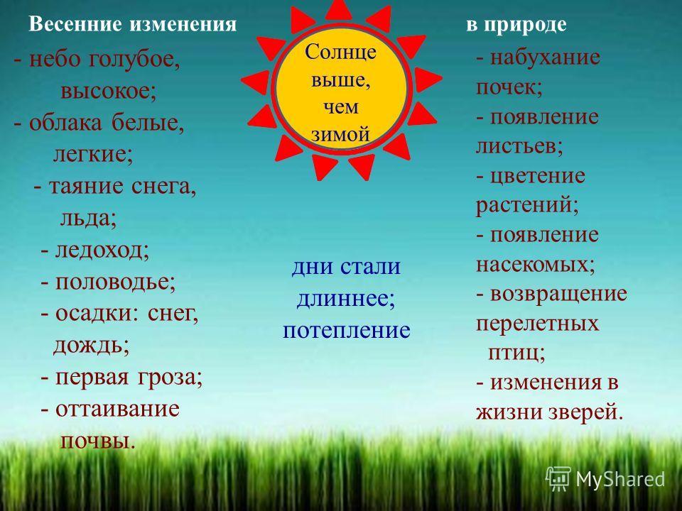 Весенние изменения в природе Солнце выше, чем зимой - набухание почек; - появление листьев; - цветение растений; - появление насекомых; - возвращение перелетных птиц; - изменения в жизни зверей. дни стали длиннее; потепление - небо голубое, высокое;