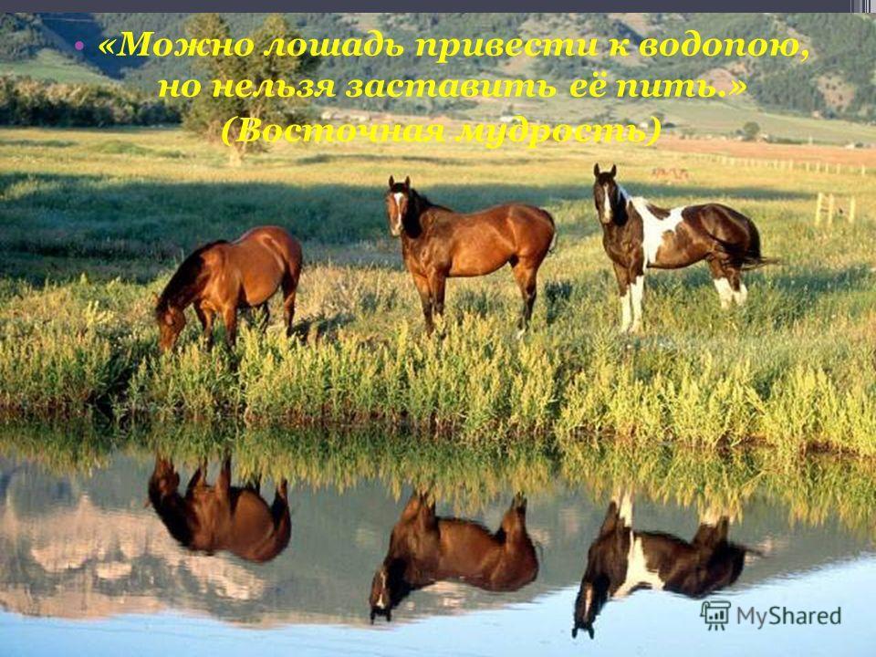 «Можно лошадь привести к водопою, но нельзя заставить её пить.» (Восточная мудрость)