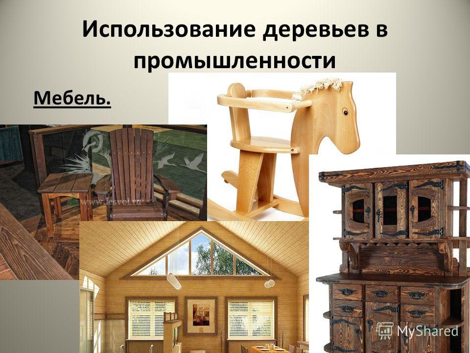 Использование деревьев в промышленности Мебель.