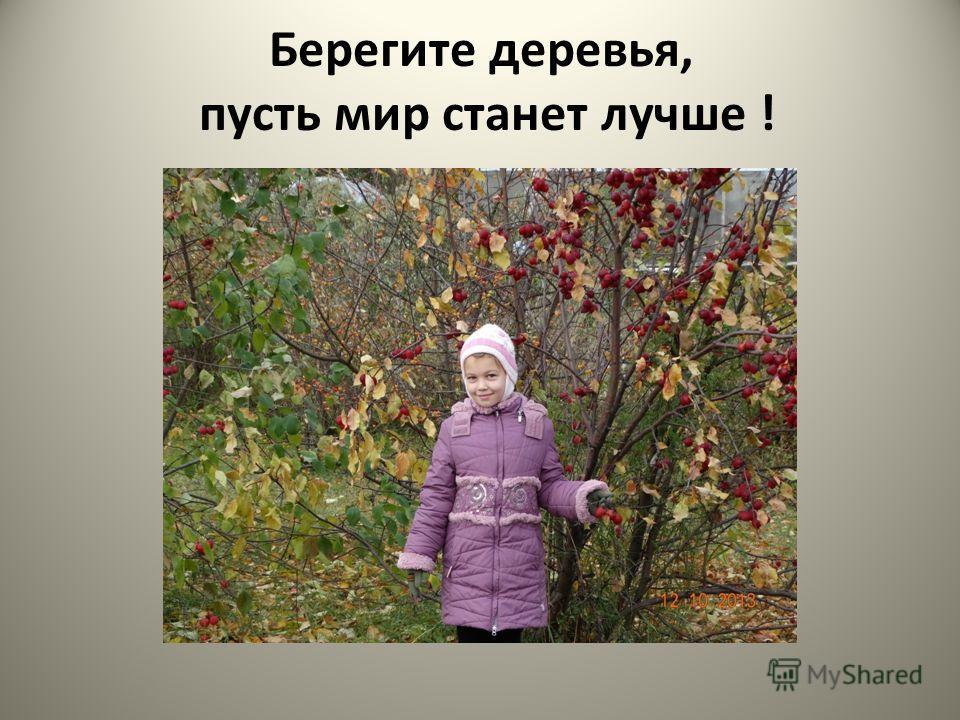 Берегите деревья, пусть мир станет лучше !