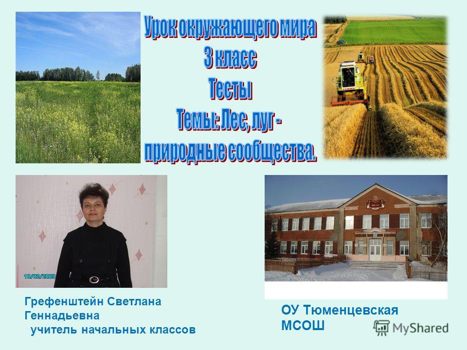 Грефенштейн Светлана Геннадьевна учитель начальных классов ОУ Тюменцевская МСОШ