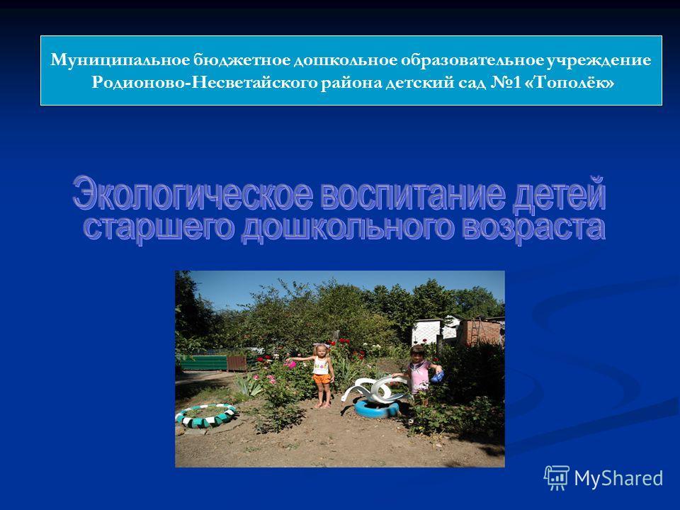 Муниципальное бюджетное дошкольное образовательное учреждение Родионово-Несветайского района детский сад 1 «Тополёк»