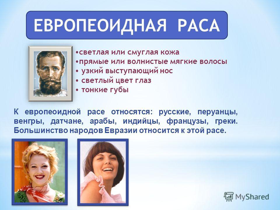 ЕВРОПЕОИДНАЯ РАСА светлая или смуглая кожа прямые или волнистые мягкие волосы узкий выступающий нос светлый цвет глаз тонкие губы К европеоидной расе относятся: русские, перуанцы, венгры, датчане, арабы, индийцы, французы, греки. Большинство народов