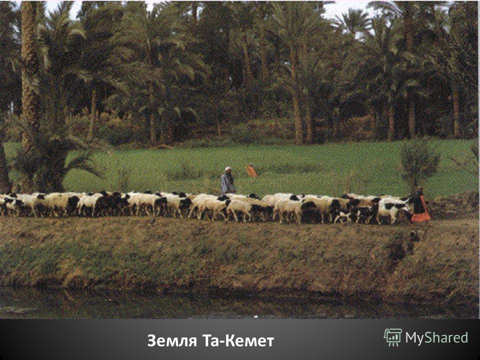 Земля Та-Кемет