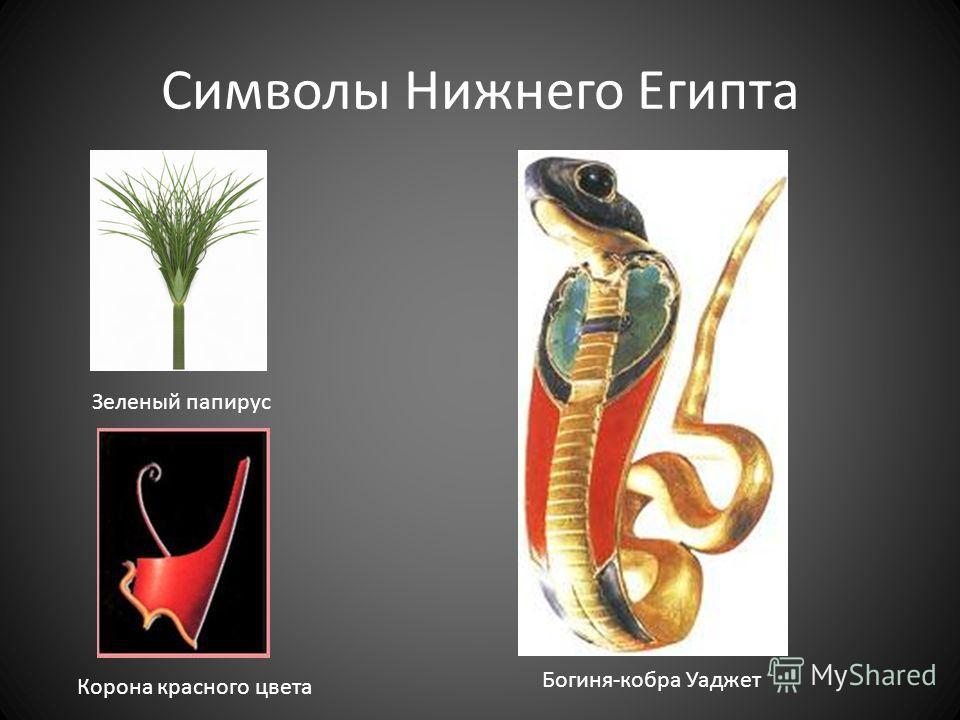 Символы Нижнего Египта Богиня-кобра Уаджет Зеленый папирус Корона красного цвета