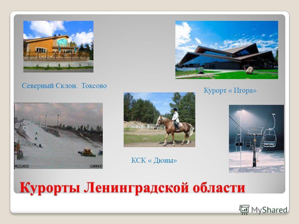 Курорты Ленинградской области Северный Склон. Токсово КСК « Дюны» Курорт « Игора»