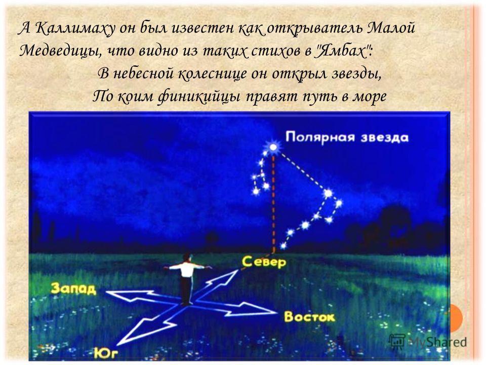 А Каллимаху он был известен как открыватель Малой Медведицы, что видно из таких стихов в Ямбах: В небесной колеснице он открыл звезды, По коим финикийцы правят путь в море