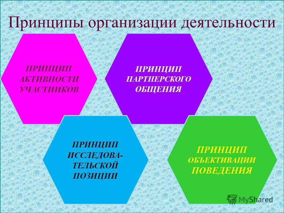 Принципы организации деятельности ПРИНЦИП АКТИВНОСТИ УЧАСТНИКОВ ПРИНЦИП ПАРТНЕРСКОГО ОБЩЕНИЯ ПРИНЦИП ИССЛЕДОВА- ТЕЛЬСКОЙ ПОЗИЦИИ ПРИНЦИП ОБЪЕКТИВАЦИИ ПОВЕДЕНИЯ