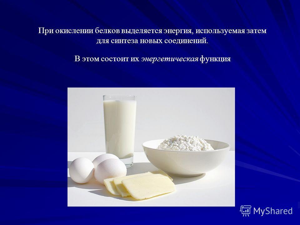 При окислении белков выделяется энергия, используемая затем для синтеза новых соединений. В этом состоит их энергетическая функция