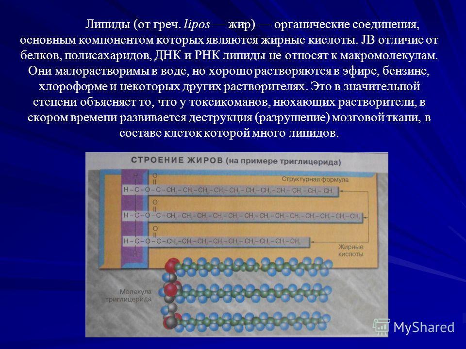 Липиды (от греч. lipos жир) органические соединения, основным компонентом которых являются жирные кислоты. JB отличие от белков, полисахаридов, ДНК и РНК липиды не относят к макромолекулам. Они малорастворимы в воде, но хорошо растворяются в эфире, б