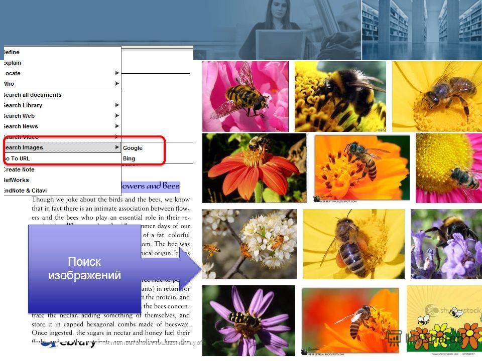 A member of the ProQuest family of companies Поиск изображений