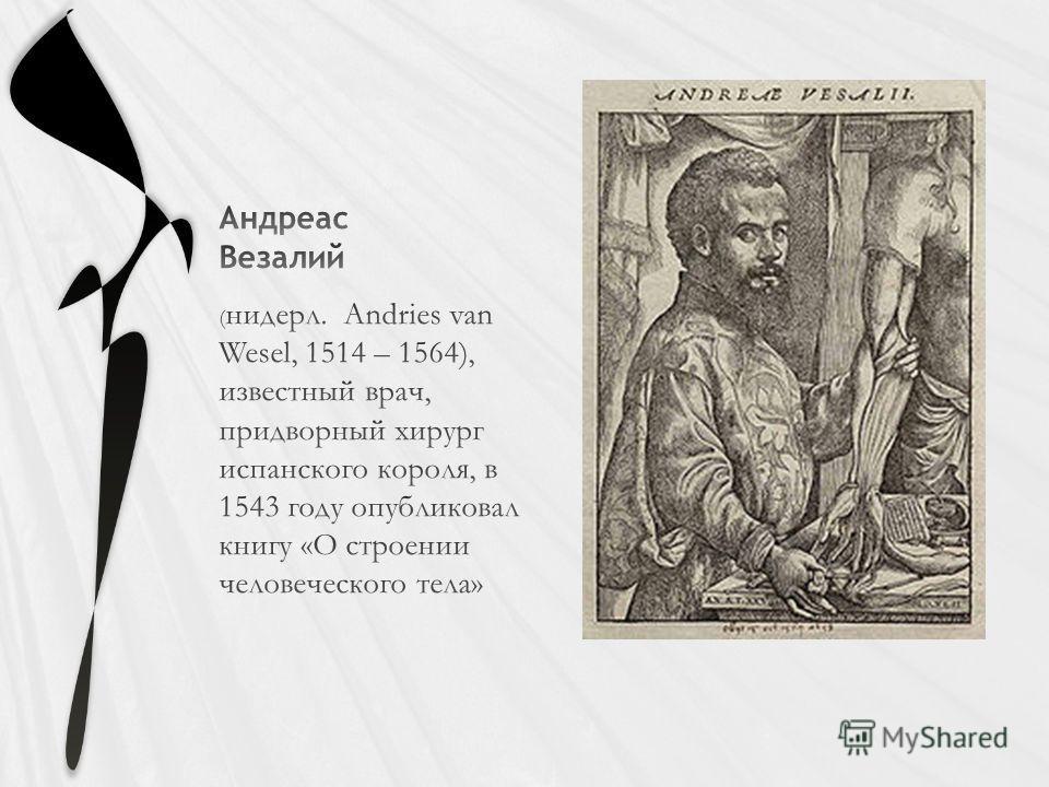 ( нидерл. Andries van Wesel, 1514 – 1564), известный врач, придворный хирург испанского короля, в 1543 году опубликовал книгу «О строении человеческого тела»
