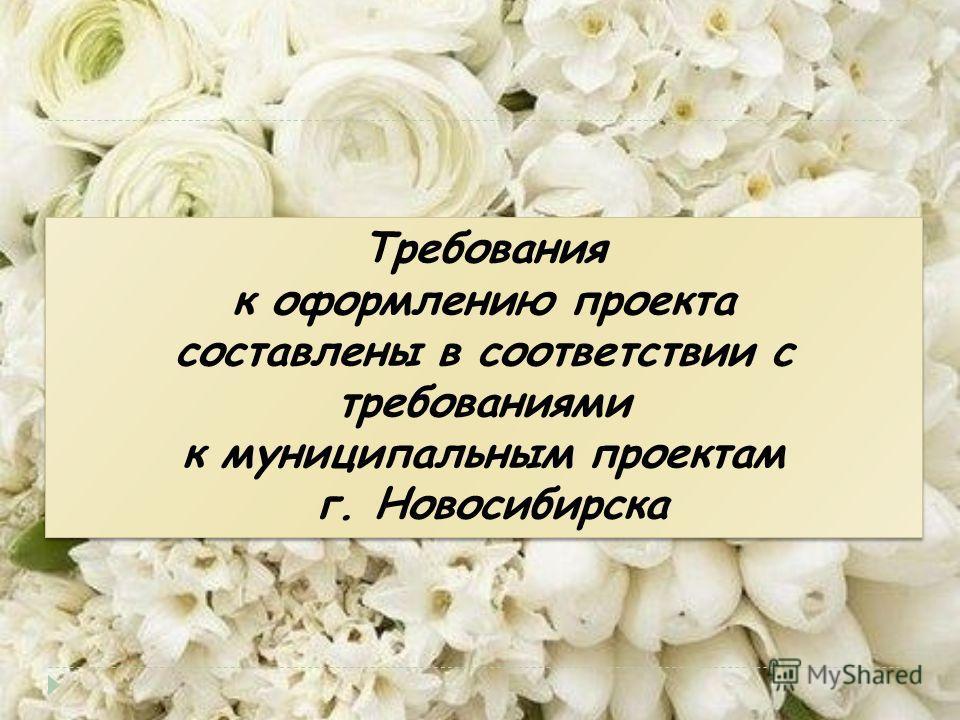 Требования к оформлению проекта составлены в соответствии с требованиями к муниципальным проектам г. Новосибирска Требования к оформлению проекта составлены в соответствии с требованиями к муниципальным проектам г. Новосибирска